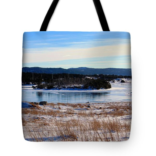 Calling All Skaters Tote Bag by Barbara Griffin