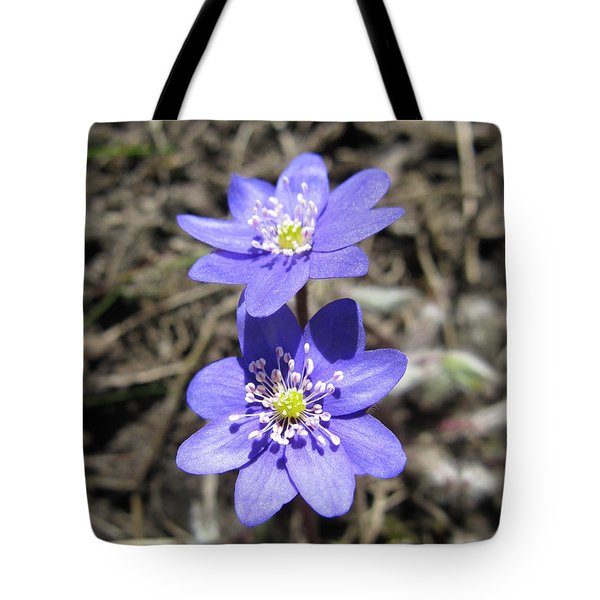 Calling Spring. Two Violets Tote Bag by Ausra Paulauskaite
