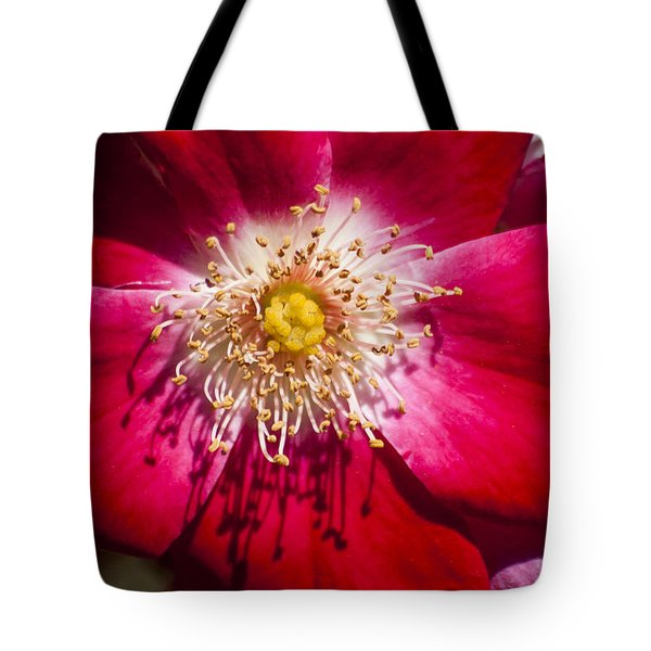 Camellia Tote Bag by Carolyn Marshall