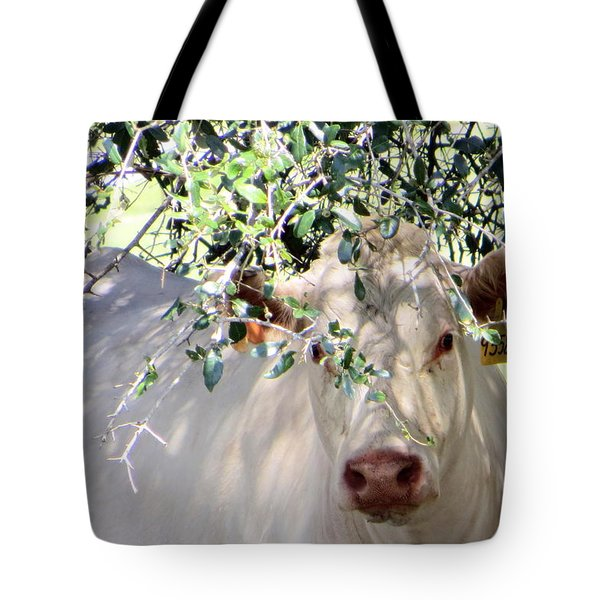 Can You See Me Now? Tote Bag by Dorothy Menera