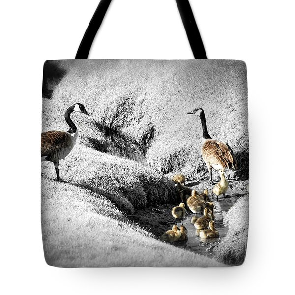 Canada geese family Tote Bag by Elena Elisseeva