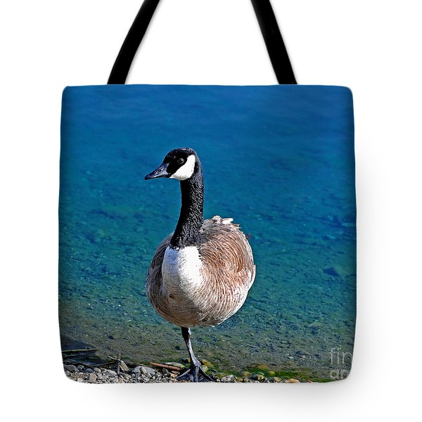 Canada Goose on One Leg Tote Bag by Susan Wiedmann