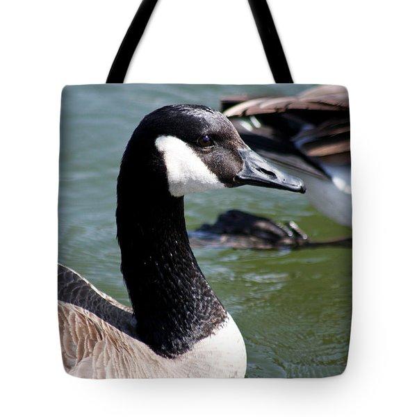 Canada Goose Profile Tote Bag by Anita Oakley