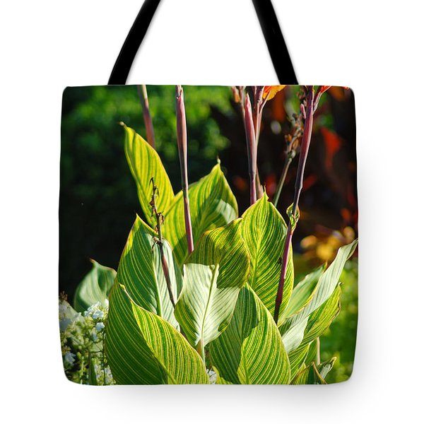 Canna Lily Tote Bag by Optical Playground By MP Ray