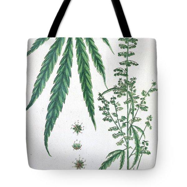 Cannabis Tote Bag by Elizabeth Blackwell