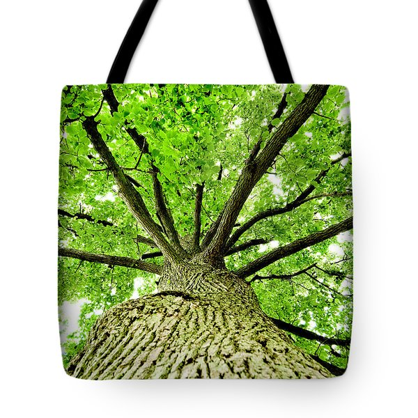 Canopy Tote Bag by Greg Fortier