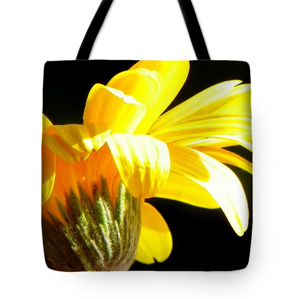 Canopy of Petals Tote Bag by KAREN WILES