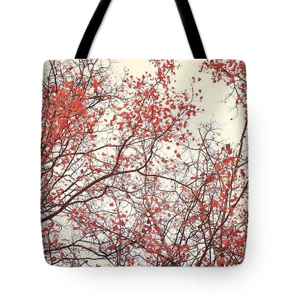 canopy trees II Tote Bag by Priska Wettstein