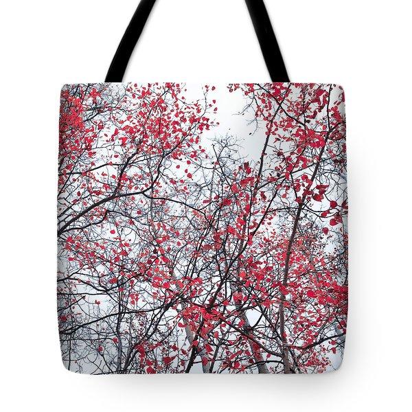 Canopy Trees Tote Bag by Priska Wettstein