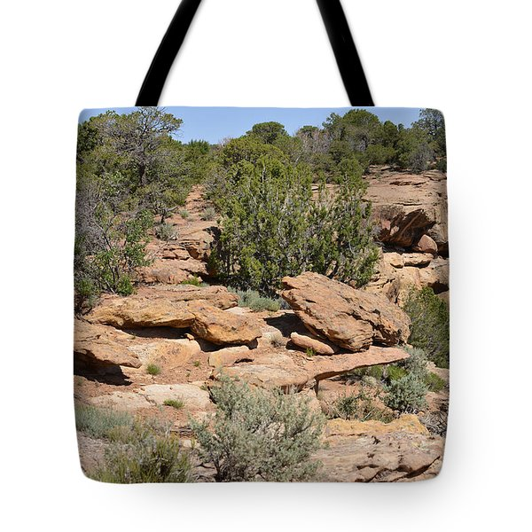 Canyon de Chelly - A blend of cultures Tote Bag by Christine Till