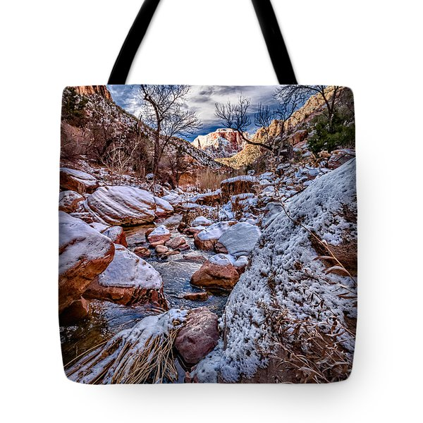 Canyon Stream Winterized Tote Bag by Christopher Holmes