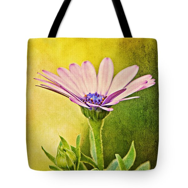 Cape Daisy Tote Bag by Lois Bryan