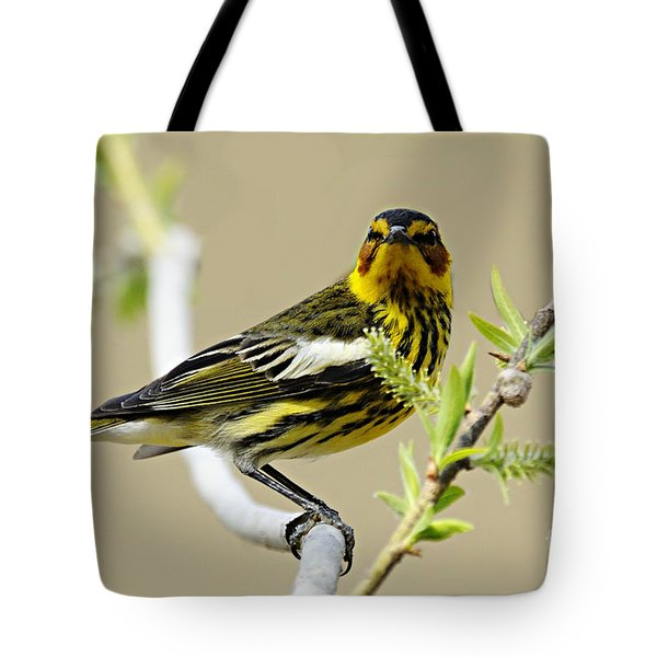 Cape May Warbler Tote Bag by Larry Ricker