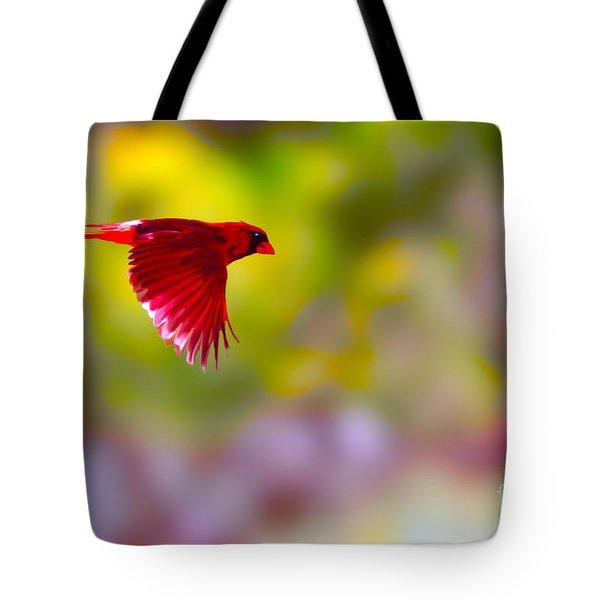 Cardinal in flight Tote Bag by Dan Friend