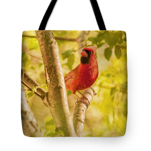 Cardinal Rules Tote Bag by Lois Bryan