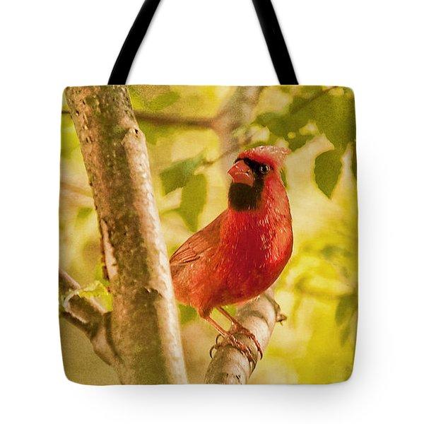 Cardinal Rules Tote Bag by Lois Bryan