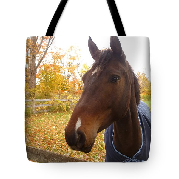Care Free Country Tote Bag by Lingfai Leung