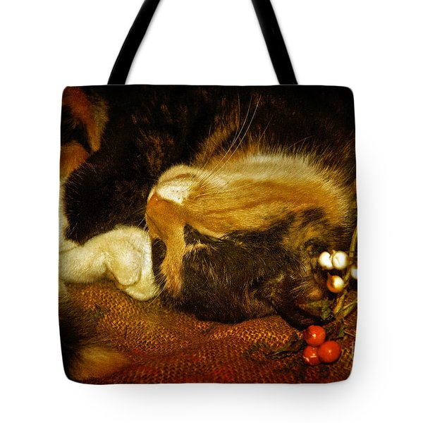 Cat Catnapping Tote Bag by Lois Bryan