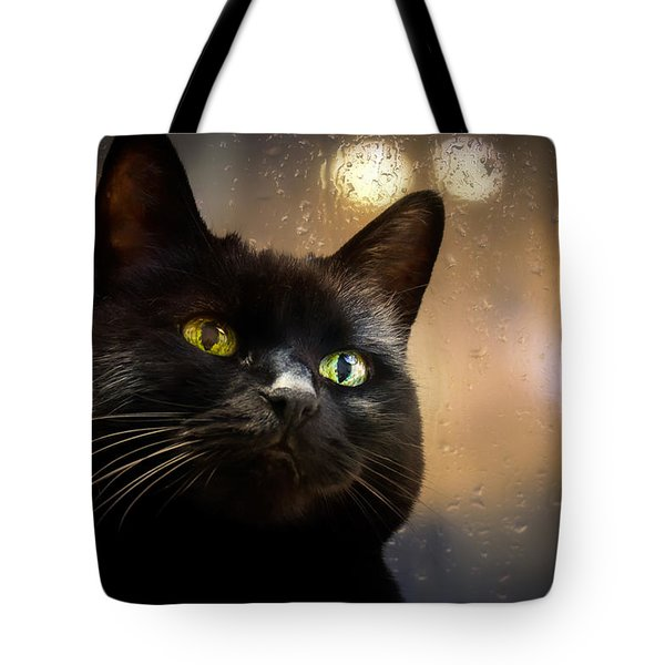Cat in the window Tote Bag by Bob Orsillo