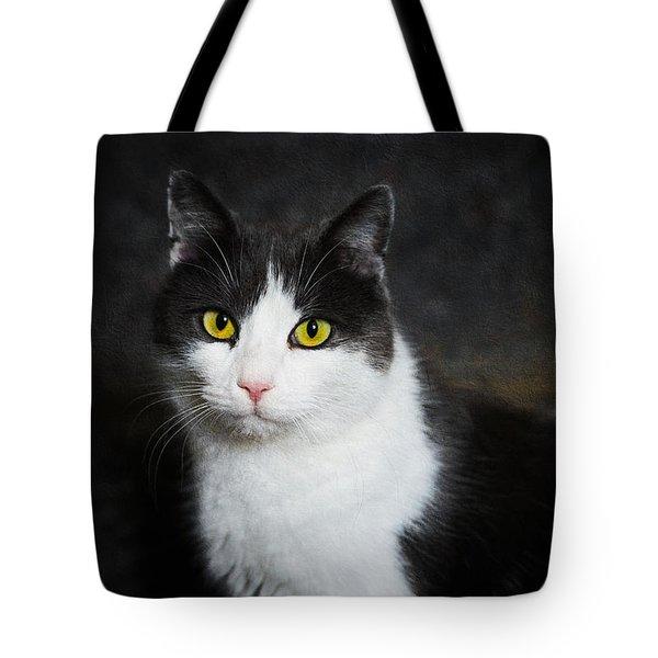 Cat Portrait With Texture Tote Bag by Matthias Hauser