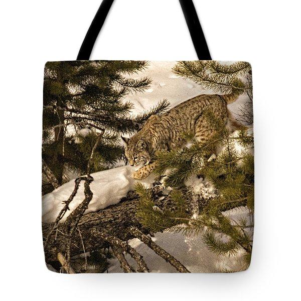 Cat Walk Tote Bag by Priscilla Burgers