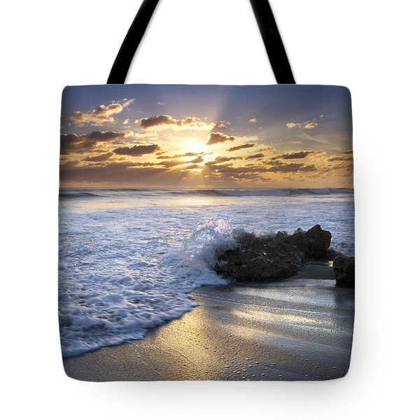 Catching the Light Tote Bag by Debra and Dave Vanderlaan