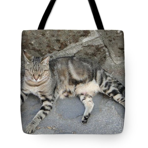 Catouflage Tote Bag by Barbie Corbett-Newmin