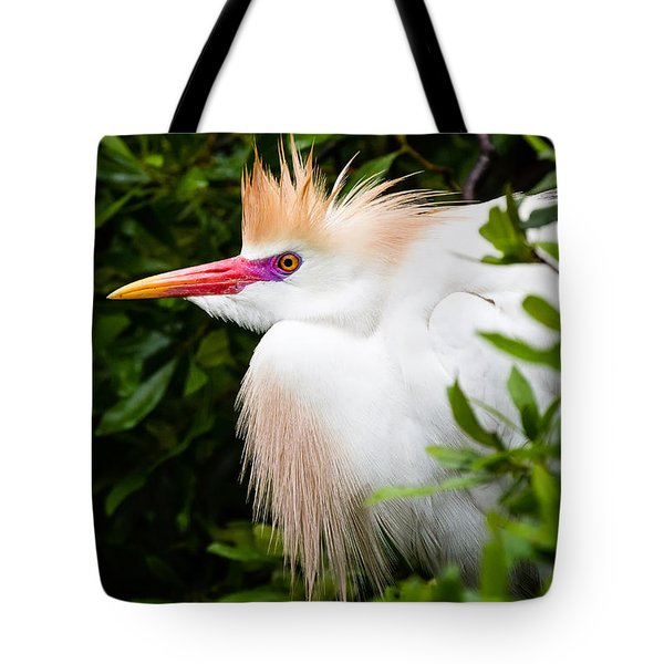 Cattle Egret Tote Bag by Dawna  Moore Photography