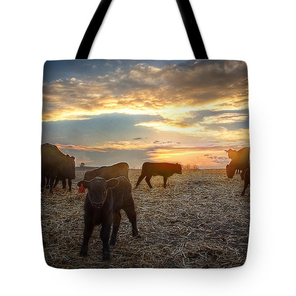 Cattle Sunset 2 Tote Bag by Thomas Zimmerman