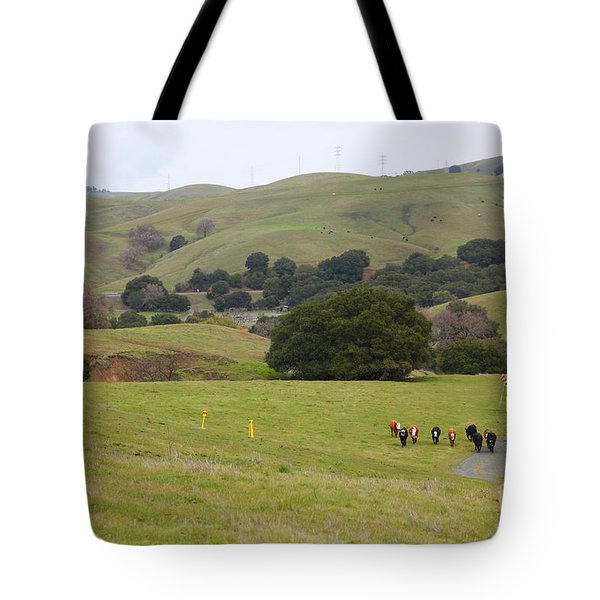 Cattles at Fernandez Ranch California - 5D21061 Tote Bag by Wingsdomain Art and Photography