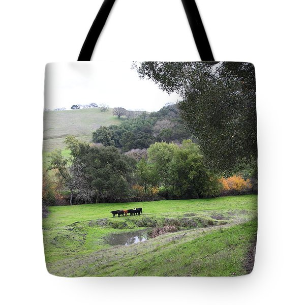 Cattles at Fernandez Ranch California - 5D21066 Tote Bag by Wingsdomain Art and Photography