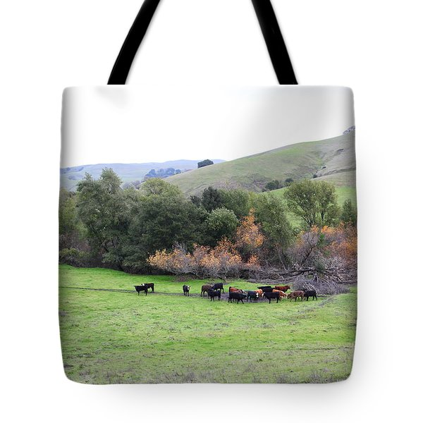 Cattles at Fernandez Ranch California - 5D21070 Tote Bag by Wingsdomain Art and Photography