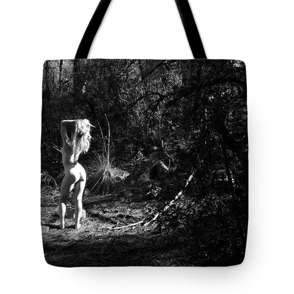 Celebration Tote Bag by Joe Kozlowski