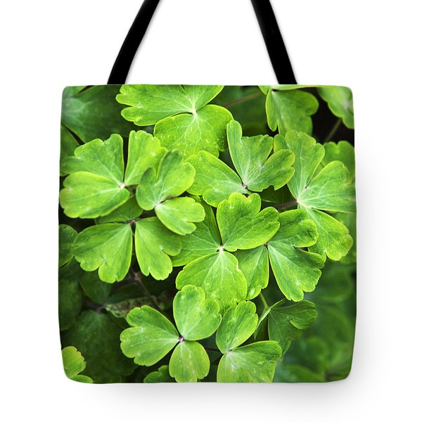 Certain Green Tote Bag by Christina Rollo