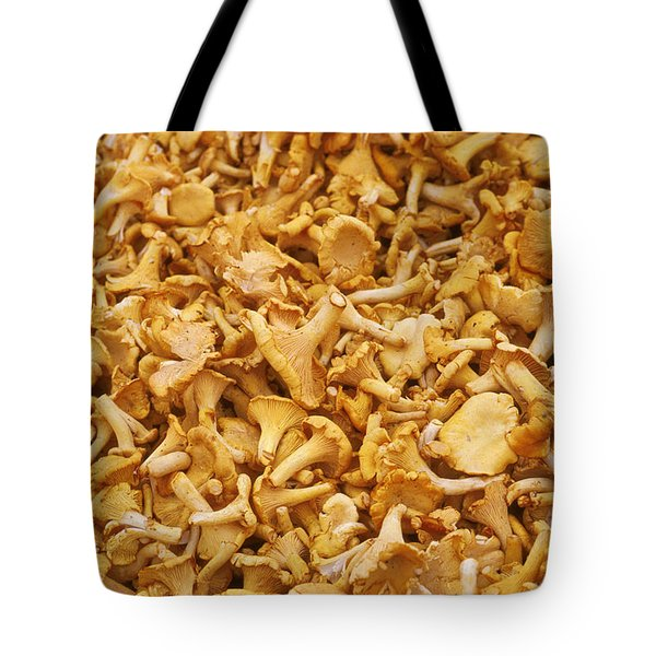 Chanterelle Mushroom Tote Bag by Anonymous