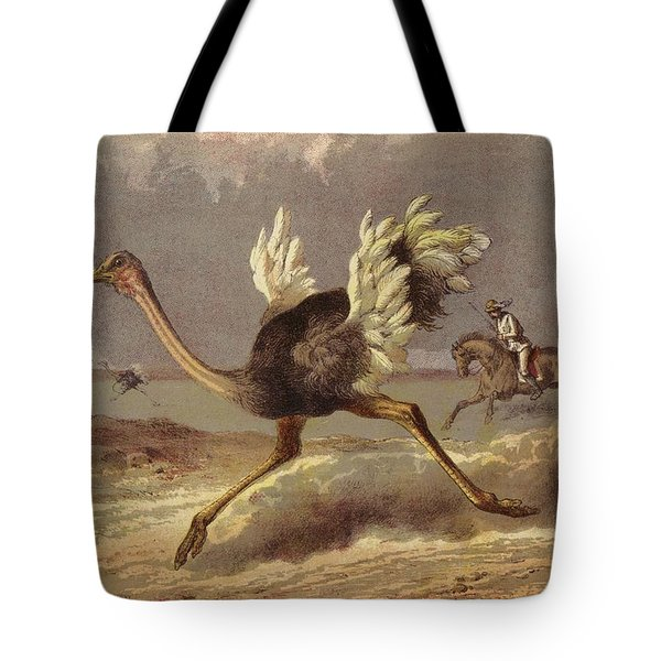 Chasing The Ostrich Tote Bag by English School
