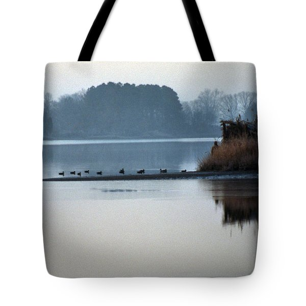 Checking The Spread Tote Bag by Skip Willits