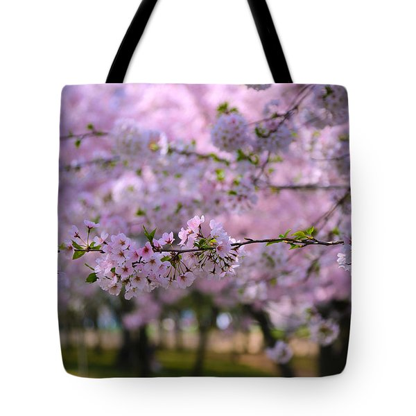 Cherry Blossom Tote Bag by Mitch Cat