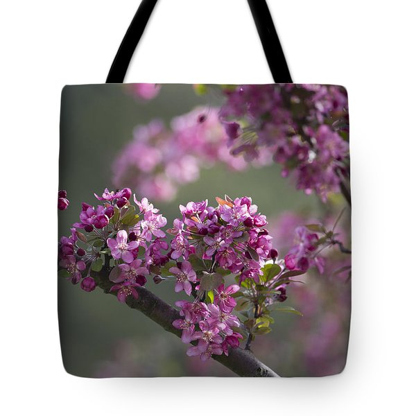 Cherry Blossoms Tote Bag by Dale Kincaid