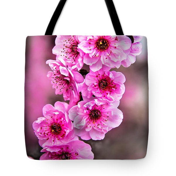 Cherry Blossoms Tote Bag by Robert Bales