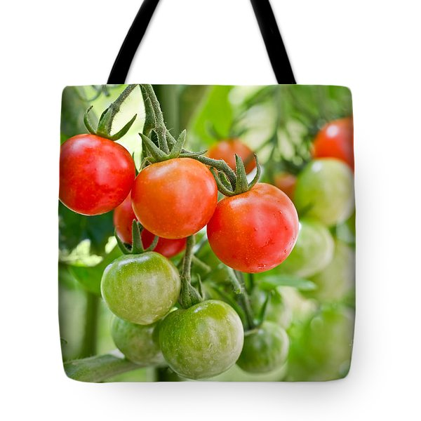 Cherry Tomatoes Tote Bag by Delphimages Photo Creations