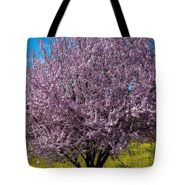 Cherry Tree In Bloom Tote Bag by Garry Gay