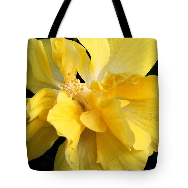 Chicago Botanical Gardens - 71 Tote Bag by Ely Arsha