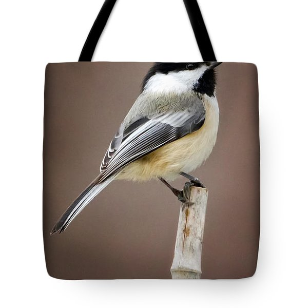 Chickadee Tote Bag by Bill Wakeley