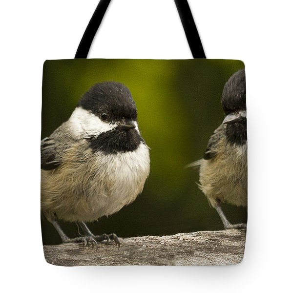 Chickadee dee dee Tote Bag by Jean Noren