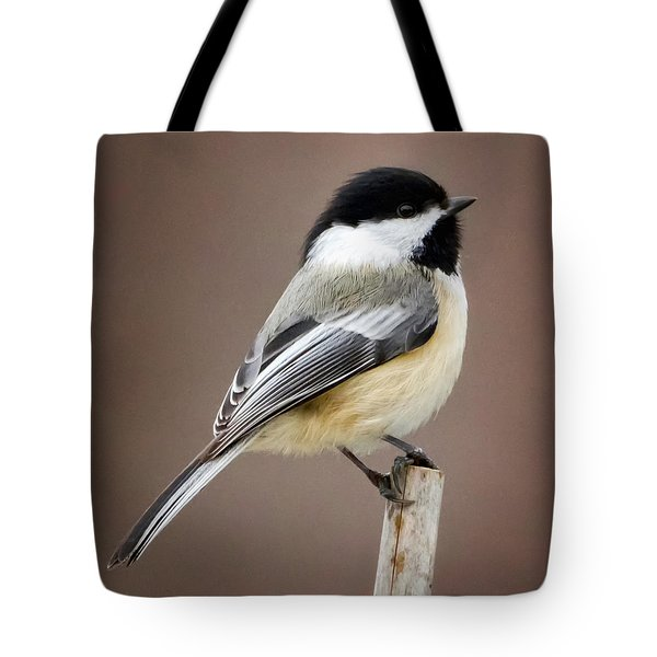 Chickadee Square Tote Bag by Bill Wakeley