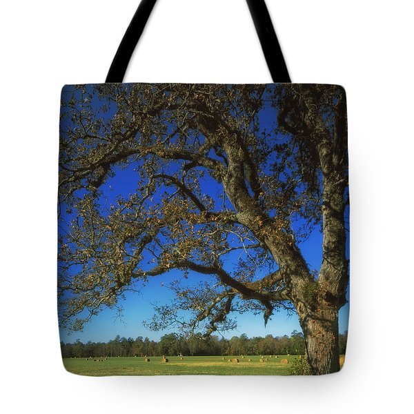 Chickamauga Battlefield Tote Bag by Mountain Dreams