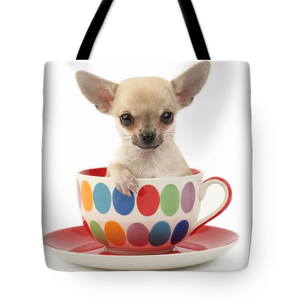Chihuahua in Cup DP684 Tote Bag by Greg Cuddiford