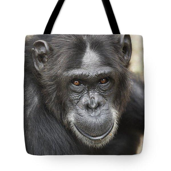 Chimpanzee Portrait Ol Pejeta Tote Bag by Hiroya Minakuchi
