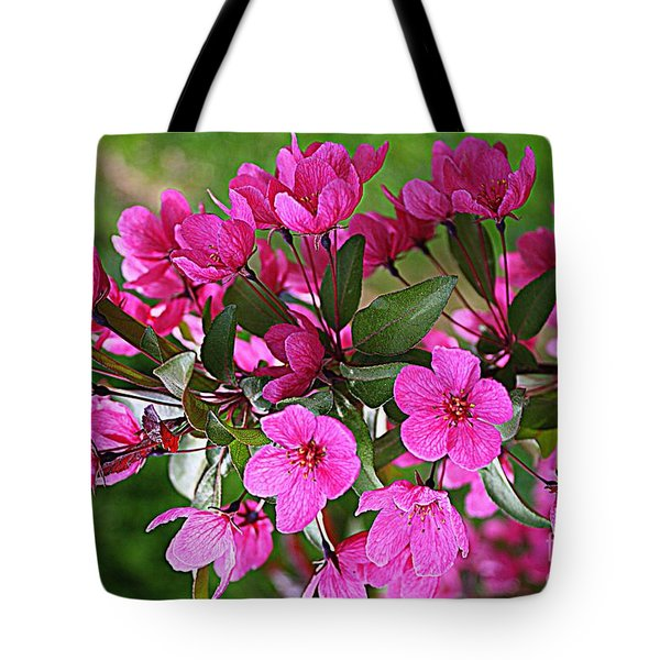 Chinese Apple Blossoms Tote Bag by Dora Sofia Caputo Photographic Art and Design
